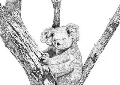 FB Barbara - Baby Koala